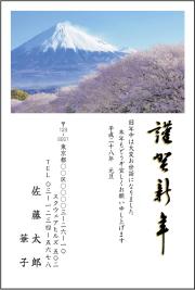 ネットスクウェア富士山デザインピックアップ2