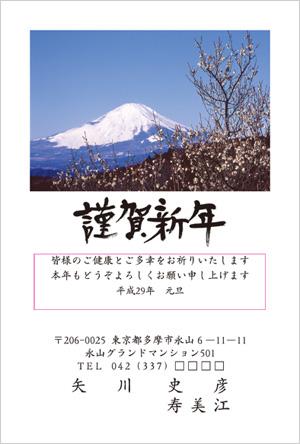 いんさつどっとねっと富士山デザイン年賀状2017-23