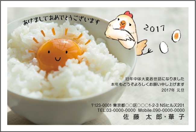 ネットスクウェアおしゃれな写真デザイン年賀状2017-1