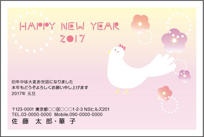 ネットスクウェアPOPな楽しいデザイン年賀状2017-5