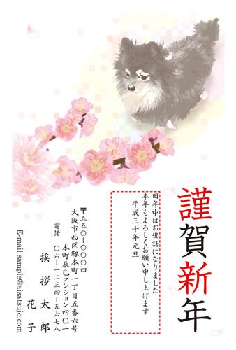 挨拶状ドットコム2018年(H30)年賀状印刷犬種別チワワ-2