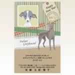ネットスクウェア犬種別年賀状イタリアングレーハウンド