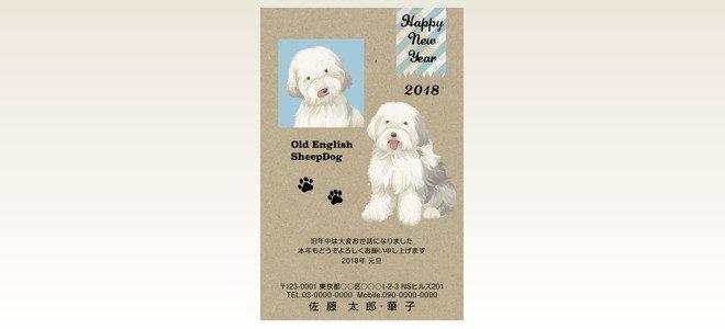 ネットスクウェア犬種別年賀状オールドイングリッシユシープドッグ