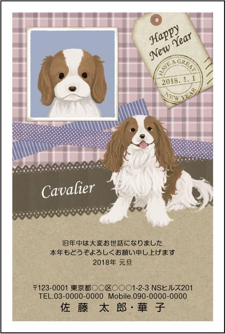 ネットスクウェア犬種別年賀状キャバリア