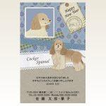 ネットスクウェア犬種別年賀状コッカースパニエル