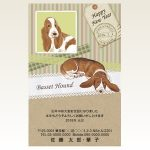 ネットスクウェア犬種別年賀状バセットハウンド