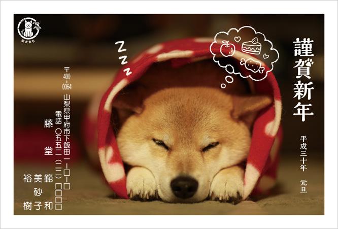2018年柴犬まるデザイン年賀状印刷-2