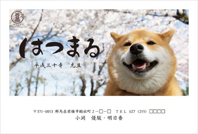 2018年柴犬まるデザイン年賀状印刷-4