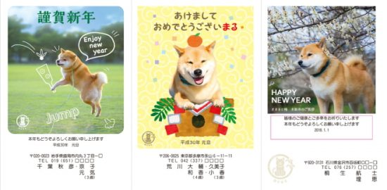 2018年柴犬まるデザイン年賀状印刷