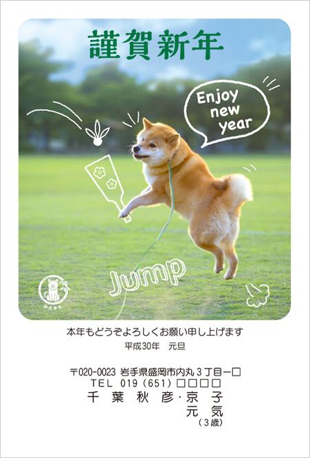 ネット限定柴犬まる2018年(H30年)年賀状デザイン-1