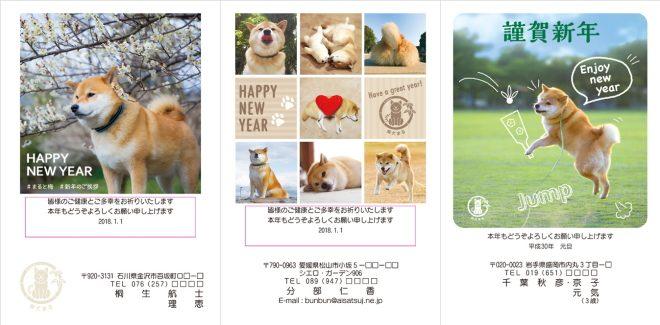 ネット限定柴犬まる2018年(H30年)年賀状デザイン