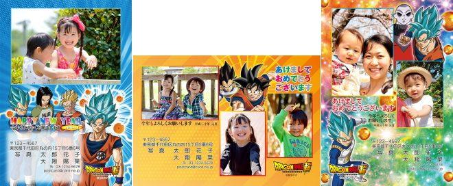 DPE宅配便(マイアルバム)2018年(H30年)ドラゴンボール超年賀状印刷